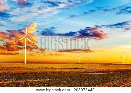 Wind turbine farm at sunset time .