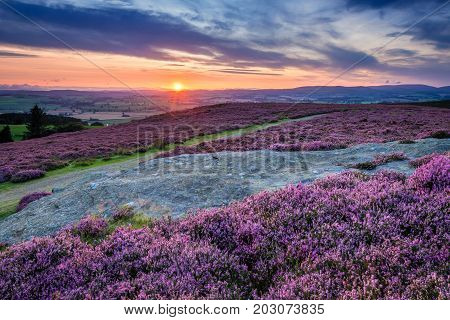 Sunset over Cheviot Hills and Rothbury Heather, a walk which offers views over the Coquet Valley to the Simonside and Cheviot Hills, heather covers the hillside in summer