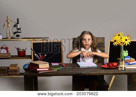 Girl Sits At Her Desk With Books, Flowers And Stationery