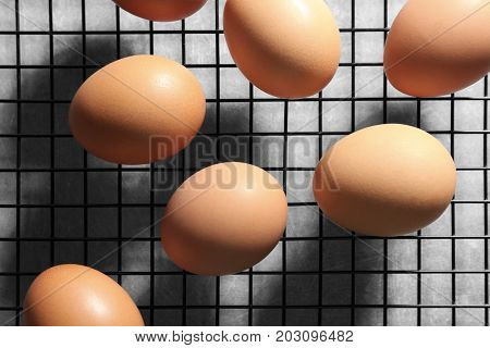 Grill with eggs in incubator