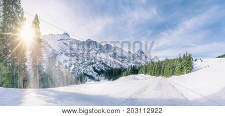 Panoramic winter scene with snow-capped mountains the green fir forests and a road through a thick layer of snow under the December sun in Ehrwald Austria.
