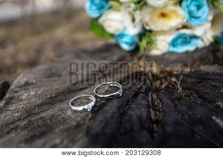Golden Wedding Rings Outdoors on the Tree Background