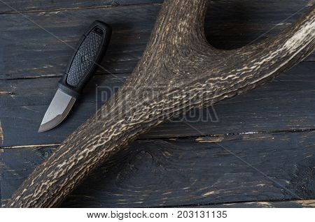 Small Hunting Knife And A Deer Horn.