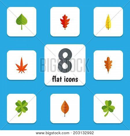 Flat Icon Leaves Set Of Linden, Frond, Hickory And Other Vector Objects