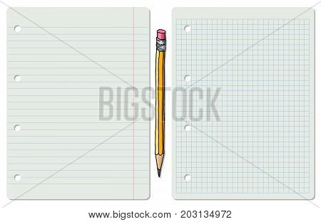 Vector illustration of two white school paper sheets lined and squared with graphite pencil in between.