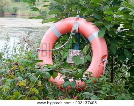 Life Buoy Safety Ring Orange Red Edge Of Lake For Drowning