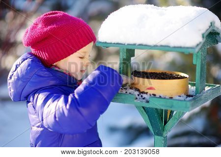 Adorable Little Girl Feeding Birds On Chilly Winter Day In City Park. Child Helping Birds At Winter.