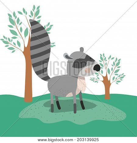 raccoon animal caricature in forest landscape background vector illustration