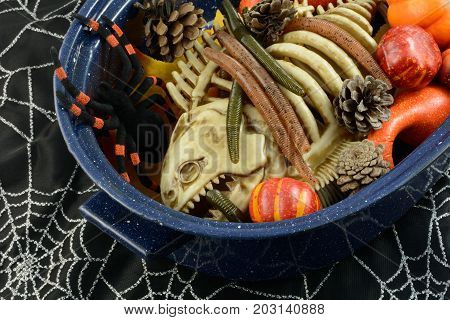 Halloween witch's brew of fish skeleton, spider, worms and pine cones and pumpkins in pot on spider webs
