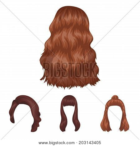 Long, red and other types of hairstyles. Back hairstyle set collection icons in cartoon style vector symbol stock illustration .