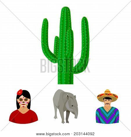 Tapir Mexican animal, a Mexican in national clothes in a poncho, a woman with a flower, a cactus. Mexico country set collection icons in cartoon style vector symbol stock illustration .