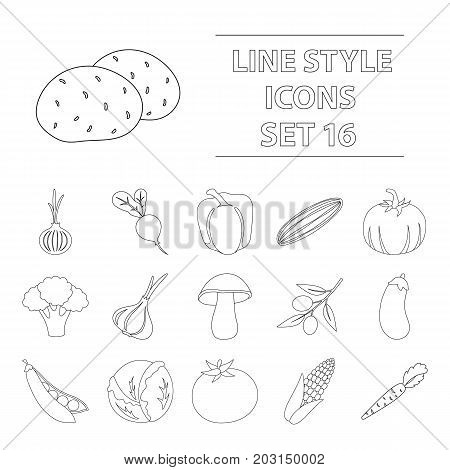 Vegetables set icons in outline style. Big collection of vegetables vector symbol stock