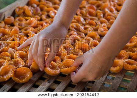 Close-up of female hands lay apricots on a wooden tray. Dried apricots background, texture.