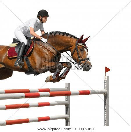 Young girl jumping with bay horse - isolated on white