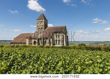 Church of Cuis in the Champagne village Cuis with green vineyards in the Champagne district Cotes de Blancs France.