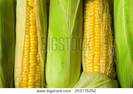 Corn corn in leaves against a white wooden table. Harvesting in the village. Stocks for the winter