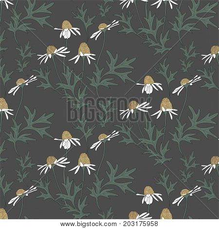 Seamless background with chamomile - vector illustration.