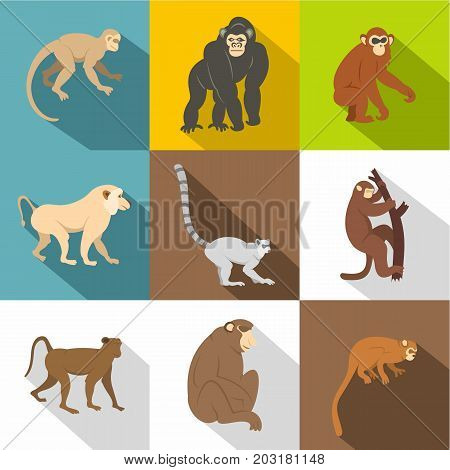 Monkey icon set. Flat style set of 9 monkey vector icons for web design