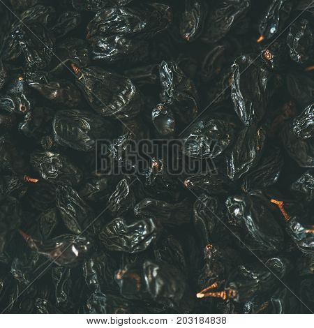 Flat-lay of black dried raisins, top view, close-up, square crop. Texture and background