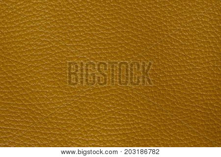 Green leather texture. structured background design druid