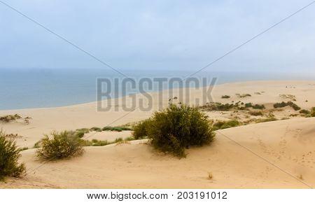 Dunes of the Curonian Spit Kaliningrad region Russia