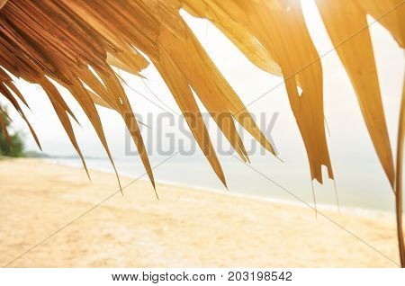 beautiful tropical beach background at sunset (sunrise),
