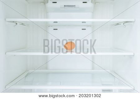 Eggs in a fridge door, Shortage concept