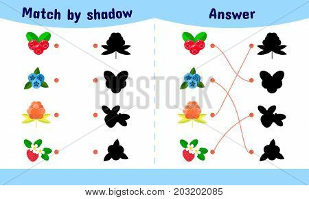Vector Illustration. Matching Game For Children. Connect The Sha