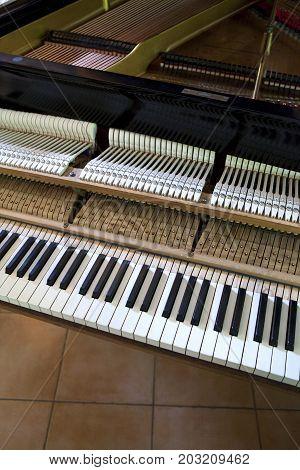 Inside A Gran Piano