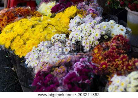 Bunch of flowers sell at flower market in Chiang Mai