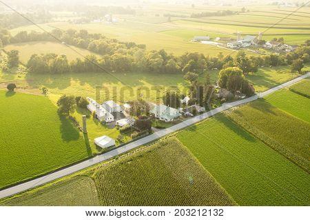 Farmland In The Evening Sun