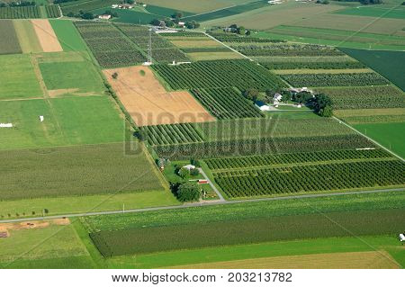 Orchards From Above
