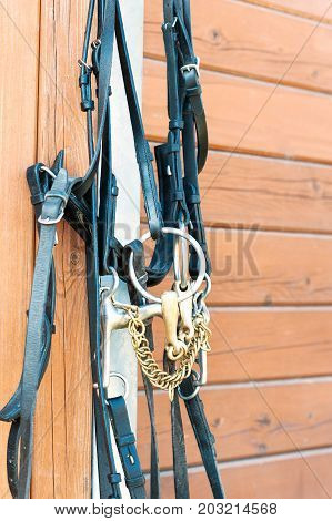 Horse bridle hanging on stable wooden wall. Summertime closeup outdoors vertical image.
