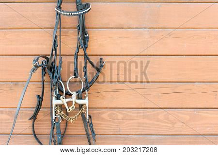 Horse bridle with decoration hanging on stable wooden wall. Front view. Summertime closeup outdoors.