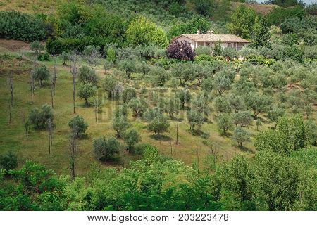Pastoral rural landscape with cozy traditional farm house in Italian Abruzzo region