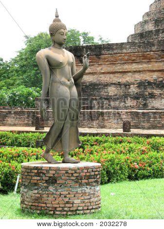 Buddha'S Arhat