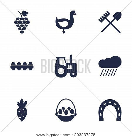 Collection Of Rake, Hen, Radish And Other Elements.  Set Of 9 Agricultural Icons Set.