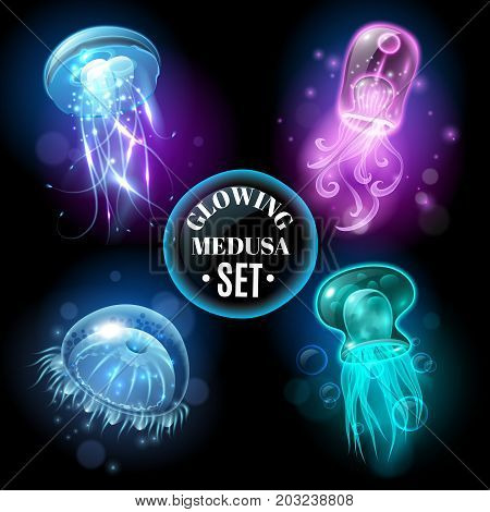 Transparent glowing pink purple blue and turquoise  medusa blubber jellyfish set decorative black background poster vector illustration