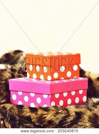 Colorful Gift Boxes On Fur Coat