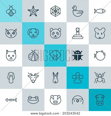 Zoology Icons Set. Collection Of Claw Print, Cobweb, Fish And Other Elements