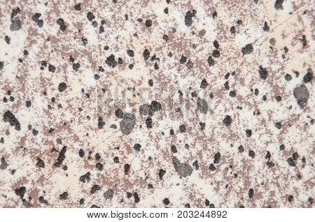 Light background with random black and brown and beige spots