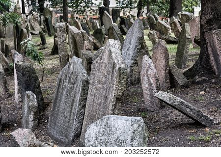 Jewish cemetery in Prague Czech republic. Historical object. Memorial place. Many graves.