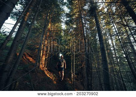 Hiking adventures of alone man photographer in evening forest.