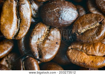 macro Coffee beans concept on wooden table background. Close up macro photography.