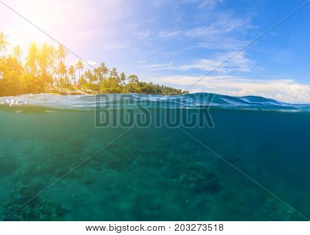 Double landscape with blue sea and sky. Seascape split photo. Double seaview. Underwater coral reef. Above and below waterline. Exotic seashore. Coral reef and green island beach. Tropical paradise