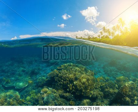 Double landscape with blue sea and sky. Seascape split photo. Double seaview. Underwater coral reef. Above and below waterline. Exotic seashore. Coral reef and green island beach. Tropical sea lagoon