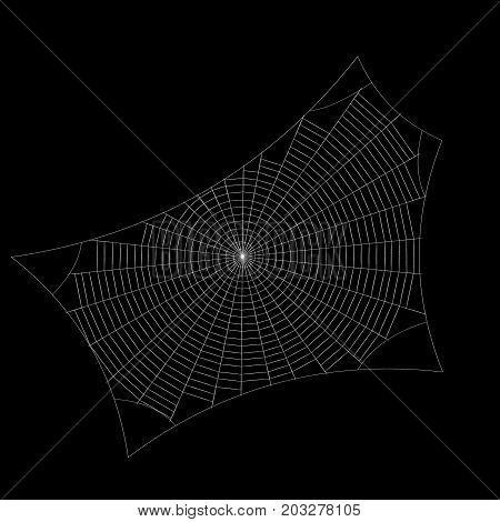 Spiderweb. Isolated on black background. Sketch illustration.