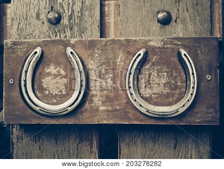 Horse shoes on a wood wall background