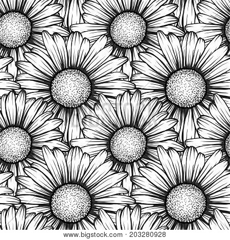 Beautiful seamless pattern with flowers daisy. design forgreeting cards and invitations of wedding birthday Valentine's Day mother's day and other seasonal holiday.