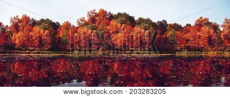 Autumn Panorama. Fall scene. Beautiful Autumnal park. Beauty nature scene. Autumn landscape Trees and Leaves Reflection on the water